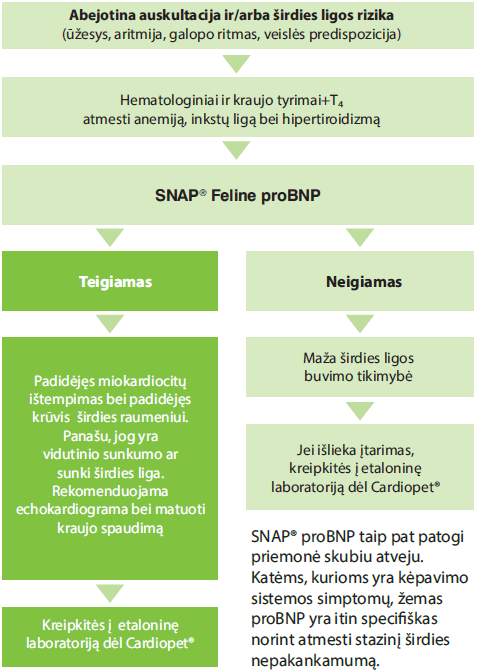 SNAP® Pro BNP