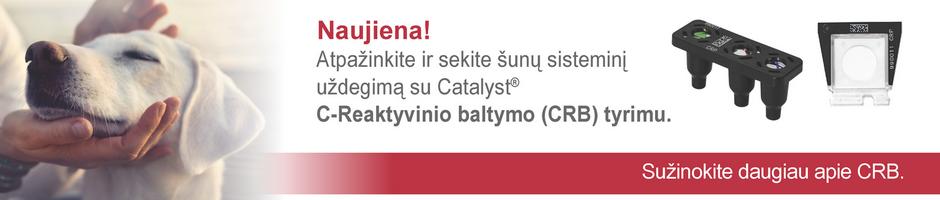 IDEXX Catalyst CRB testas